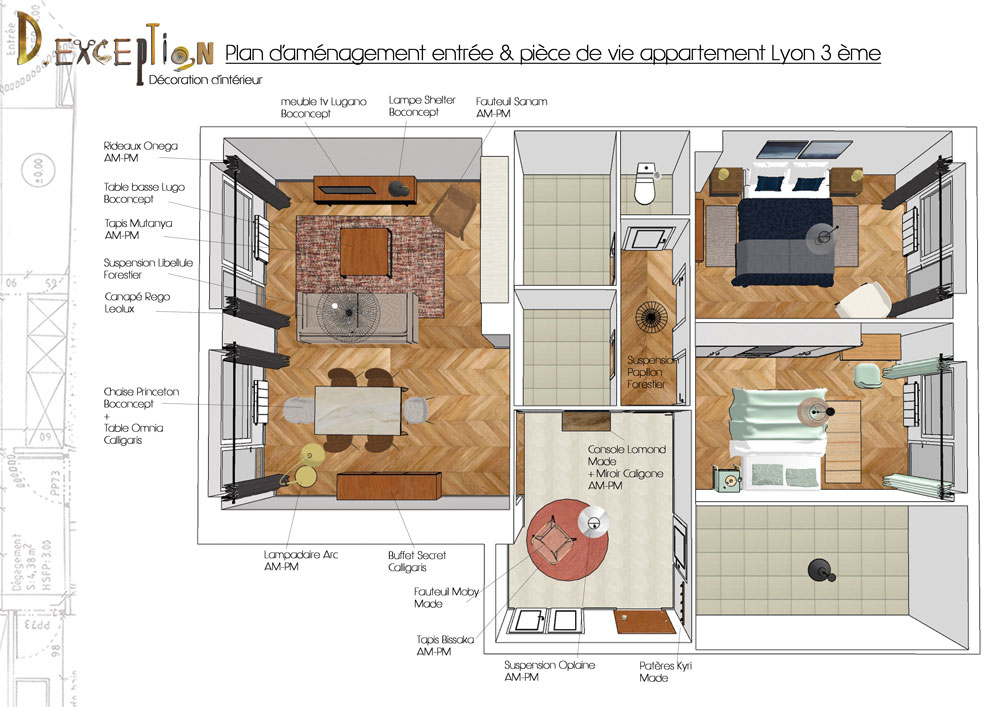 plan-amenagement-entree-salon-salle-a-mnager-appartement-lyon-3-eme